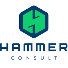 Hammer Consult